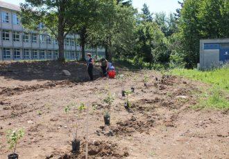 Permakulturni ogledni vrt niče i u Gospiću