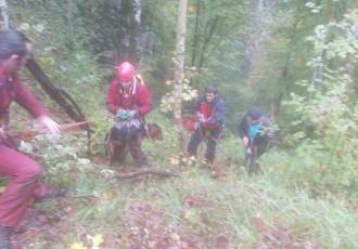 Gorski spašavatelji spasili tri psa