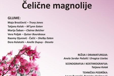 """Na Dan žena u Gospiću """"Čelične magnolije"""""""