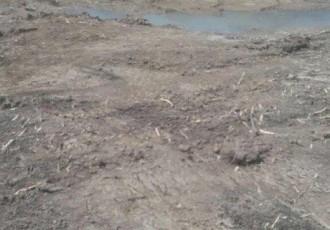Skupština lovinačkih ribiča:saniraju štetu nastalu uređenjem jezera!!!