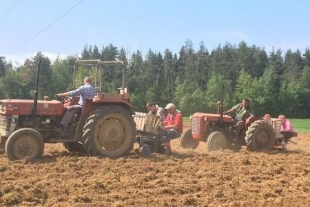 Caritas Gospićko-senjske biskupije i ove godine posadio krumpir za pomoć potrebitima