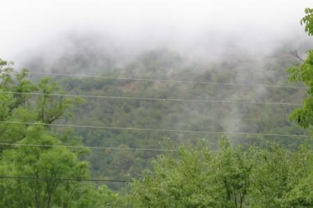 """Poziv na uvodno predavanje izrade Programa gospodarenja šumama šumoposjednika za gospodarsku jedinicu """"Divoselo – Raduč"""" u Gospiću"""