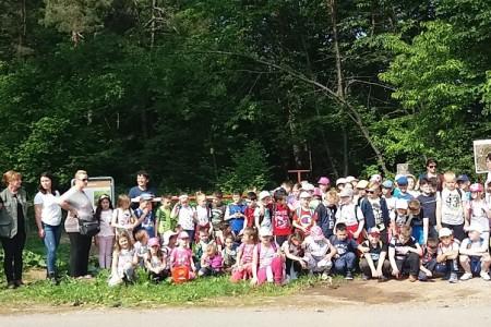"""U Jasikovcu provedba projekta """"Škola u šumi, šuma u školi"""""""