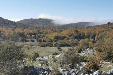 Porast broja posjetitelja i novi projekti u Pećinskom parku Grabovača