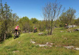 Prvi dojmovi nakon testiranja nove XCO staze na Cvituši  za Nacionalno prvenstvo Hrvatskog biciklističkog saveza