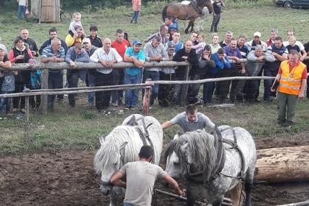 U nedjelju 17.rujna šlajs u Krivome putu i koševina kod Brnje i Jure Turine