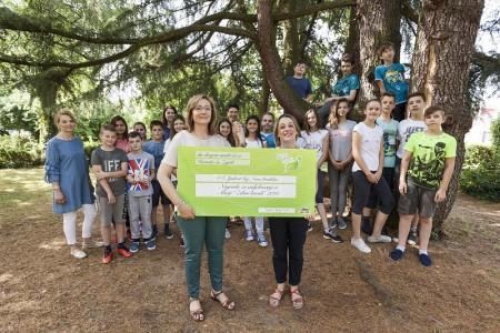 dm poziva osnovne škole da se uključe u 9. akciju dm Zeleni korak