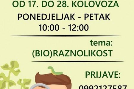 Do sutra traju prijave za Ljetnu školu na Grabovači