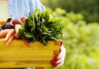 Grad Gospić poziva poljoprivrednike na dopunsku izobrazbu o uporabi pesticida koju će u cijelosti financirati